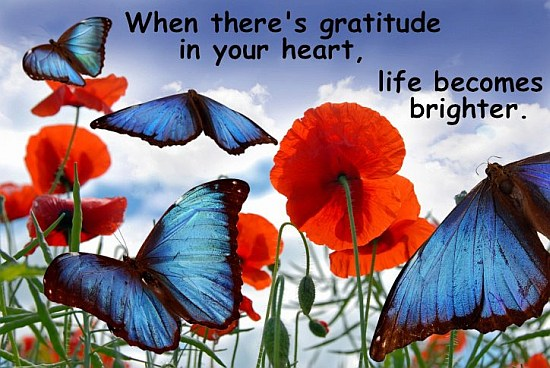 Gratitude-in-Heart-Quote